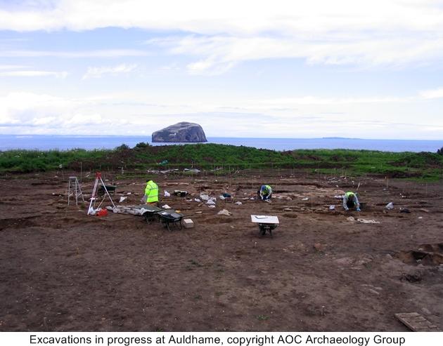 Excavation in progress at Auldhamea
