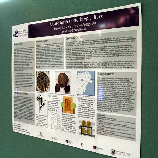 Murray Sherlock Stewart's poster at AEA