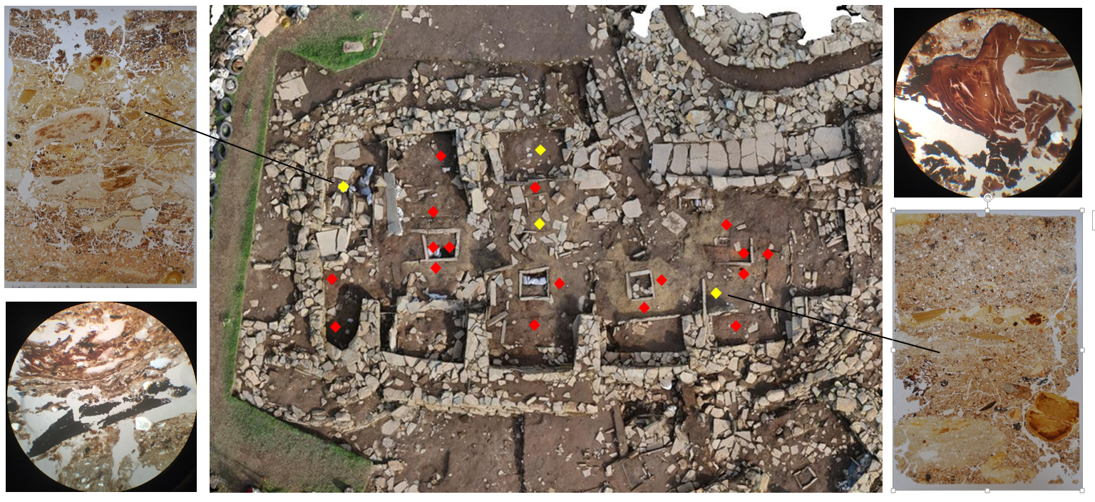 Spaces inside places: the placement of samples through key locations within Structure 8. Samples in yellow were processed thanks to the Society's grant. These were selected to provide examples from a range of areas – for example, recess versus high-traffic areas – and for samples showing a good sequence of both construction and activity-related deposits. Main photo credit: Hugo Anderson-Whymark. Other images: Jo McKenzie.